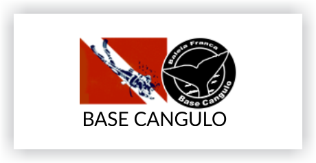 Base Cangulo Logo